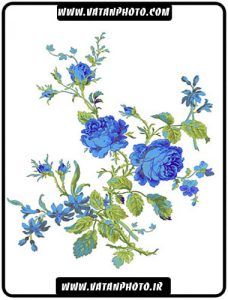 طرح کاملا لایه باز از گل آبی با فرمت psd