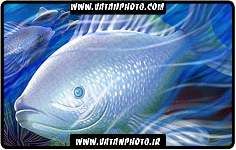 طرح گرافیکی ماهی در آب کاملا لایه باز +psd