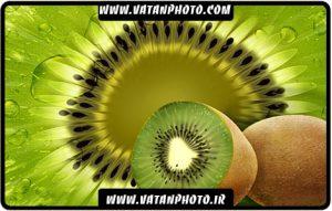 طرح کاملا لایه باز میوه کیوی با کیفیت بسیار بالا+ psd