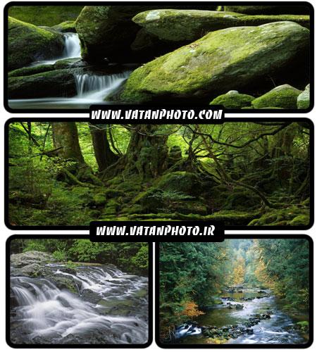 عکس با کیفیت از جنگل های سرسبز و رودخانه ها + HD