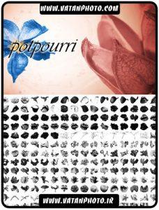براش زیبا از اشکال و لکه های جامد برای کارهای گرافیکی