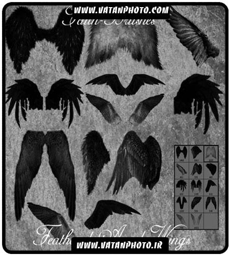دانلود رایگان براش بال های انواع پرندگان