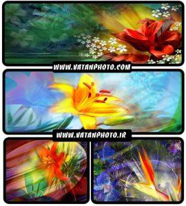 مجموعه عکس های گرافیکی از گل با کیفیت بالا+ HD