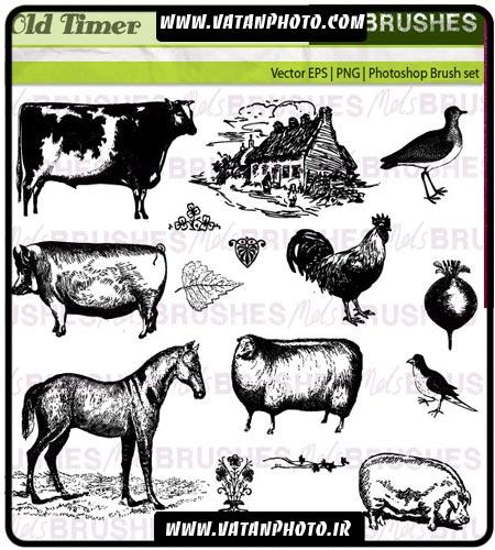 براش کاربردی از انواع حیوانات و وکتور های با کیفیت