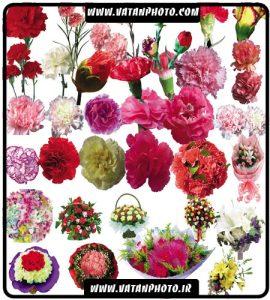 مجموعه آیکن گل و دسته گل