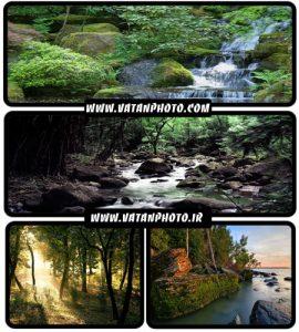 مجموعه عکس های جذاب از طبیعت سرسبز در سایز wallpaper HD