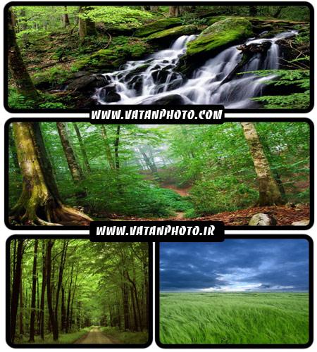 مجموعه 20 عکس با کیفیت از طبیعت سر سبز+ wallpaper HD
