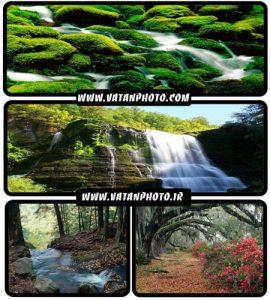 20 عکس جذاب از طبیعت سر سبز با کیفیت بالا+ wallpaper HD