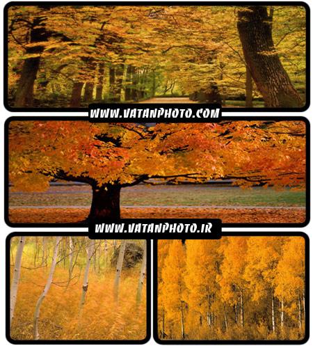 مجموعه 30 عکس با کیفیت از خزان پاییزی+ wallpaper HD