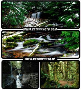 عکس های بسیار با کیفیت از طبیعت سر سبز+ wallpaper HD