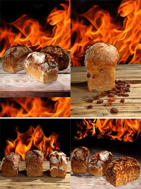 تصاویر شیرینی کشمشی حجیم - شاتر استوک