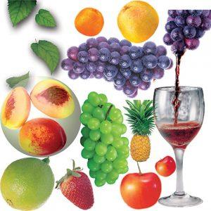 مجموعه آیکن میوه