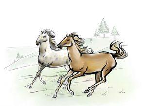 کارت ویزیت باشگاه اسب سواری