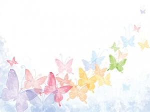 بکگراند پروانه رنگارنگ psd