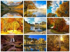 مجموعه 50 عکس جنگل پاییزی و جاده و رودخانه 1920x1200