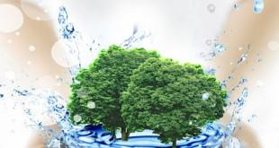 طرح لایه باز گرافیکی حفاظت از محیط زیست psd