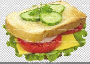 عکس بدون بکگراند ساندویچ کالباس و پنیر