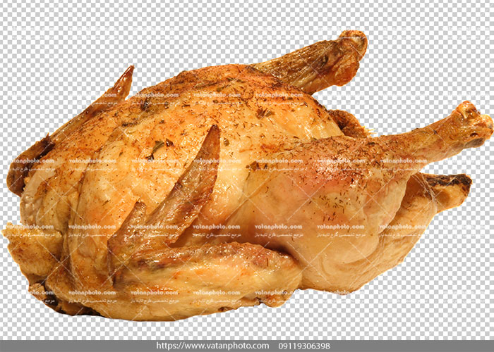 عکس دور بر شده مرغ سرخ شده