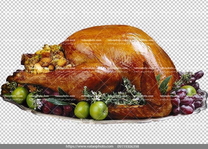 عکس بدون بکگراند مرغ شکم پر