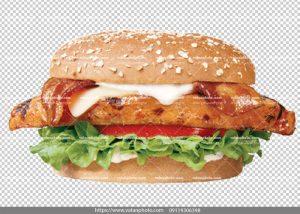 عکس بدون بکگراند ساندویچ مرغ پنیر