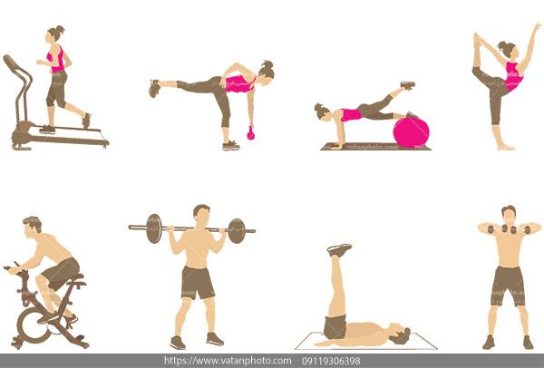 وکتور حرکات ورزشی بدنسازی