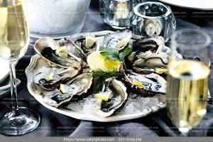 عکس خوراک صدف دریایی