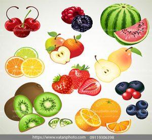 مجموعه وکتور آیکن دسته میوه ها خوشمزه