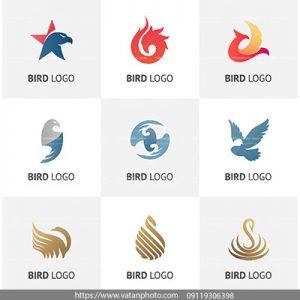 مجموعه وکتور لوگو پرنده