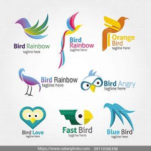 مجموعه وکتور لوگو پرندگان
