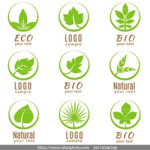 لوگو برگ سبز